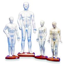 FEMALE MODEL 46cm