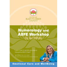 NUMEROLOGY & ABFE WORKSHOP DVD 2pk