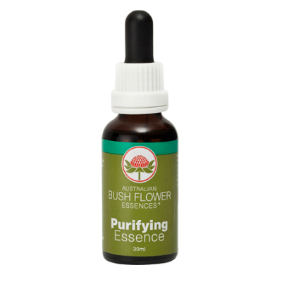 PURIFYING ESSENCE 30ml