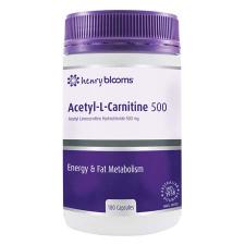 ACETYL L-CARNITINE 500 180Vcap