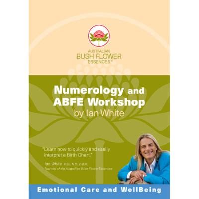 NUMEROLOGY & ABFE WORKSHOP DVD 2pk