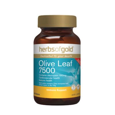 OLIVE LEAF 7500 60Tabs Olive leaf (Olea europaea)
